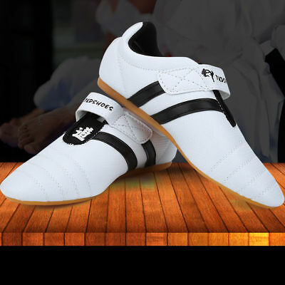 Kung Fu Karate Tai Chi Martial Arts Training Shoes Footwear Sneaker Taekwondo GG