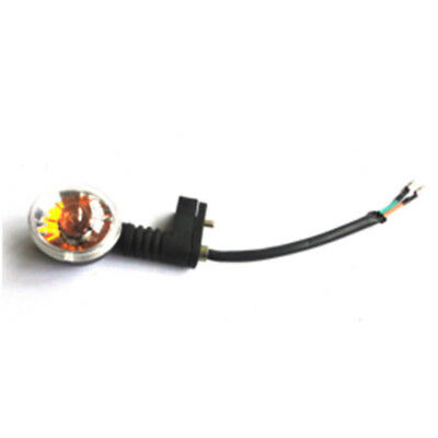 Blinker hinten links 12V 10W AGM Eppella Scoody E-Roller E-Scooter ZWD306 ZWD308