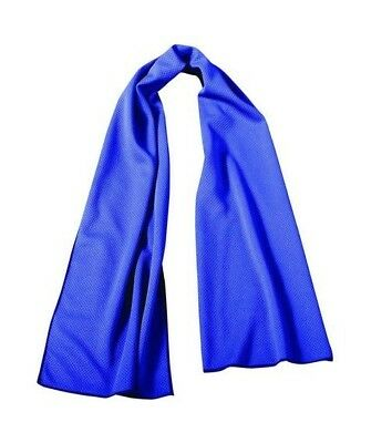 OccuNomix TD400-018 Wicking and Cooling Navy Towel, 1 Each