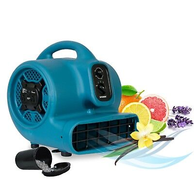 XPOWER P-450AT 1/3 HP Fresh Scented Air Mover with Timer 2000 CFM Daisy Chain