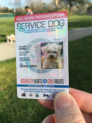 Professional Quality Service Dog Id Card For Service Animal Professional Ada Esa