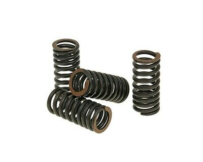 Vespa GTS 250ie Malossi Titanium Valve Spring Set for Sport City DNA Runner X7 X