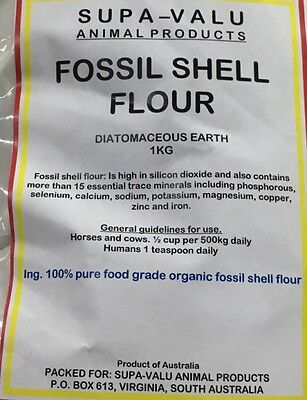 Food Grade Fossil Shell Flour ~ Diatomaceous Earth~ A Natural Feed Additive 1KG
