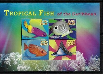 St Kitts Sgms1131, 2014 Tropical Fish Mini Sheet Mnh