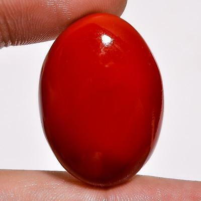 Red Coral Oval Cabochon Loose Gemstone  49.4 Ct. Ms-90
