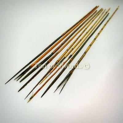 Nine Old Vintage Papua New Guinea Fishing Arrows Spears