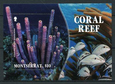 Montserrat 2017 MNH Coral Reef Sponge 1v S/S Fish Fishes Corals Marine Stamps