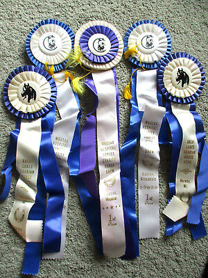 5 VINTAGE 1970's & 1980's HORSE SHOW RIBBONS