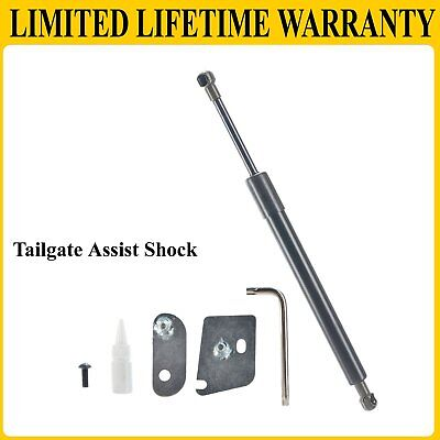 Truck Tailgate Assist Shock Kit For 2015-2018 Ford F-150 Pickup DZ43204 EZ Down