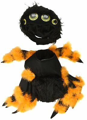 California Costume Collections PET20149 Spider Pup Dog Costume, Large