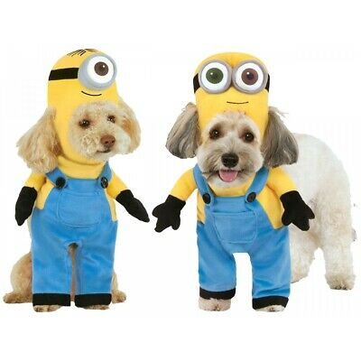 Minion Costume Pet Despicable Me Halloween Fancy Dress