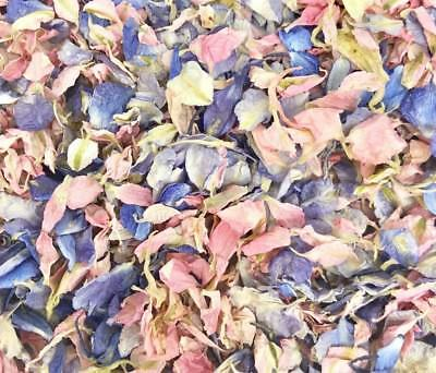 PINK Blue Real Delphinium WEDDING CONFETTI Flutter Fall Natural Biodegradable