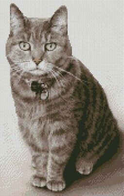 """Tabby Cat Kitten Long Haired Counted Cross Stitch Kit 8.5/"""" x 9.5/"""" C2348"""