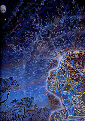 Art Print POSTER / CANVAS Moon Alex Grey Psychedelic Trippy