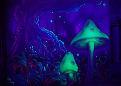 Art Print POSTER / CANVAS Generic Magic Valley Trippy Mushrooms
