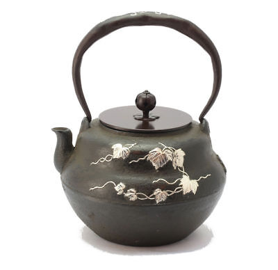 Kyoto Iron Kettle Ginzogan Hisagogata Japanese Tea Ceremony / SHOJUDO / K020-007