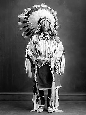"1909 Crow Indian, Portrait, Headdress, antique, Native American, 16""x11"" Photo"