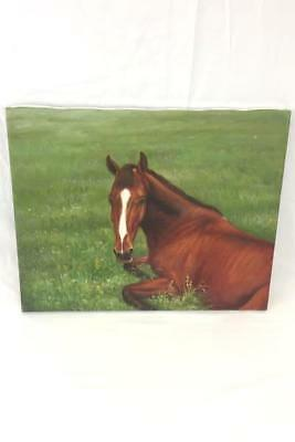 Oil Painting Ginger Foal Horse Laying In Field by Rose M. Sullivan