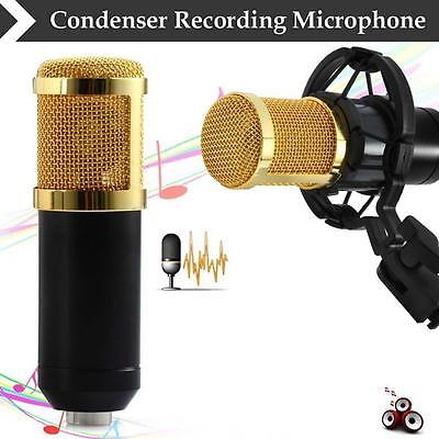 BM800 Condenser Pro Audio Microphone Black Sound Studio Dynamic Mic + Mount UP