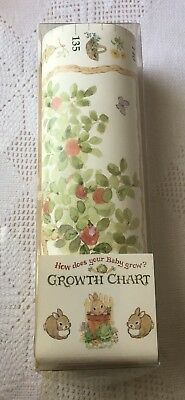 Growth Chart, C.R. Gibson, How Does Your Baby Grow?