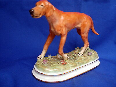 Rare  Antique Beautiful Meissen  Porcelain Figure Of A Pointer,  Hunting Dog