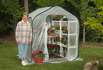 Portable Greenhouse FlowerHouse SpringHouse 6 ft square Pop Up Backyard Garden