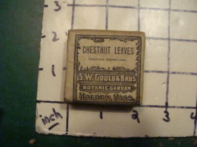 unused old store stock -- S W GOULD & bros -- CHESTNUT LEAVES
