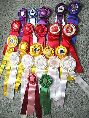 22 VINTAGE HORSE SHOW RIBBONS - Mostly 1970's