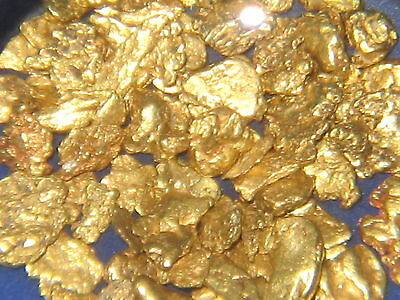 Gold Nuggets From Arizona Placer Mining / Dredge Sluice High Banker Dry Washer