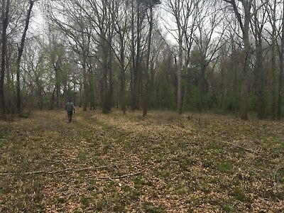 Montezuma, Ga. Macon County , 800 Ft On Flint River, Hunting Land, 70 Plus Acres