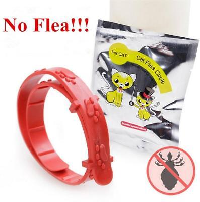 Pet Safety Collar Large Dog Anti Flea Tick Mosquito Elimination Plastic