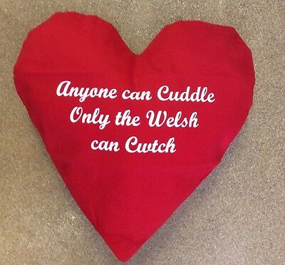 WTFOnly The Welsh Can CwtchMetal Wall Sign PlaqueCymru Proud Wales Hug