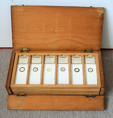 Collection of 36 Antique  MICROSCOPE SLIDES in PINE DISPLAY CABINET