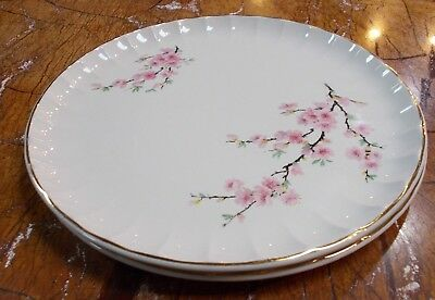 "W.S.George Bolero 10 1/4"" Dinner Plates, Set of Two"