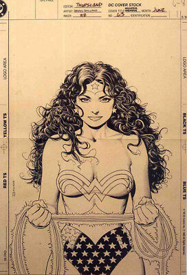 Wonder Woman Repro 1990 Ink Illustration Poster By Brian Bolland . Dc Comics