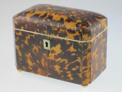 Rare Antique 19th Century Faux Tortoiseshell Tea Caddy Circa 1820