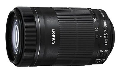 Canon EF-S 55-250mm f/4-5.6 IS STM Telephoto Zoom Lens