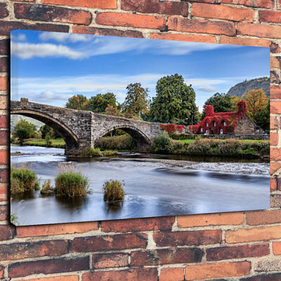 """Red Ivy Cottage Printed Canvas Picture A1.30""""x20"""" 30mm Deep Home Decor"""