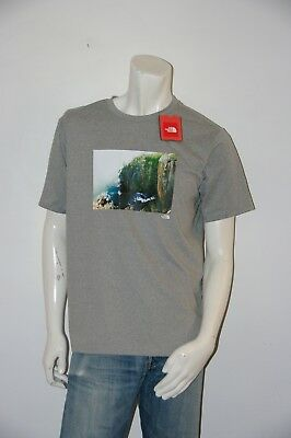 571ddf5ed THE NORTH FACE California Bear Short Sleeve Gray T-Shirt Men's ...