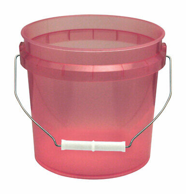 Leaktite Red Transparent Paint Pail 1 Gl Pack of 12