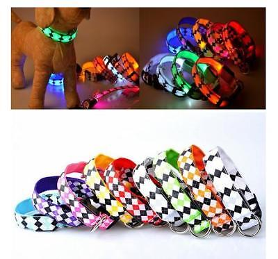 Fashion New Pet Dog LED Glow Light Leash Collar Bling Pattern Collar Buckle