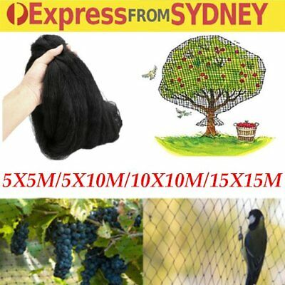 4 Sizes Black Anti Bird Netting Mesh Net For Farm Crop Fruit Plant Tree GM