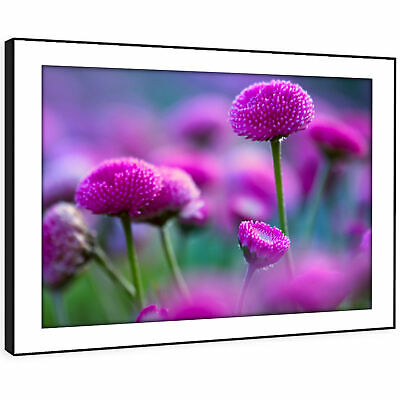 SC260 Purple Green Flowers Nature Landscape Framed Wall Art Large Picture Prints