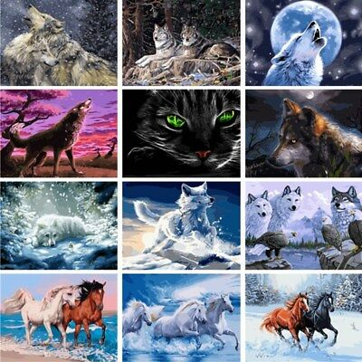 Wolf Animals DIY Acrylic Paint By Number Kit Oil Painting Canvas Art Decor Horse