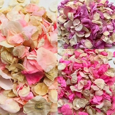 Rose Petal Biodegradable Confetti Eco Natural Wedding for Throwing