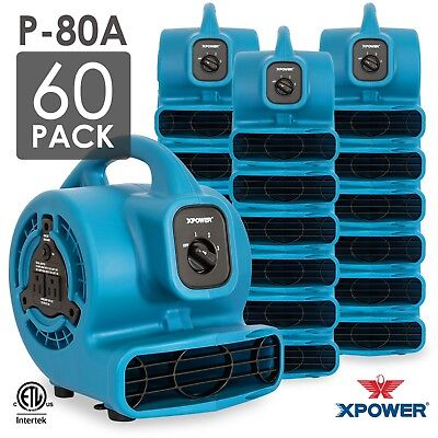 XPOWER P-80A 1/8 HP Mini Air Mover Carpet Dryer Blower Floor Fan 60 Pack
