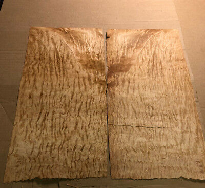 """Quilted Maple 10"""" x 22"""" 2Pcs Total Raw Wood Veneer AA 1055"""