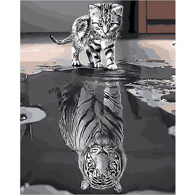 Reflection Cat Tiger Oil Painting Kit Coloring By Numbers Home Wall Decoration