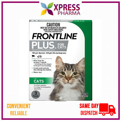 Frontline Plus for Cats spot on application flea infestation NEW STOCK XPRESS