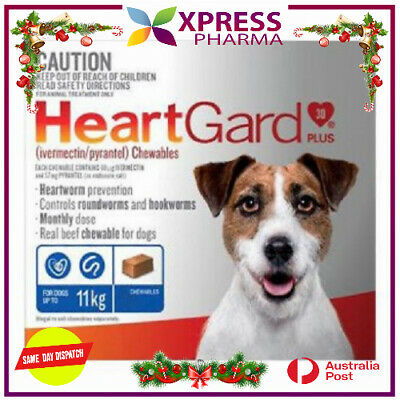 Heartgard Plus Allwormer for Dogs Small up to 11 kg Blue Wormer